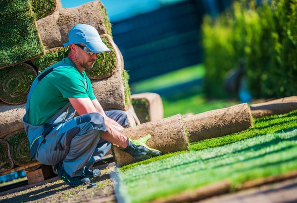 How Can a Landscaping Company Help your Business?