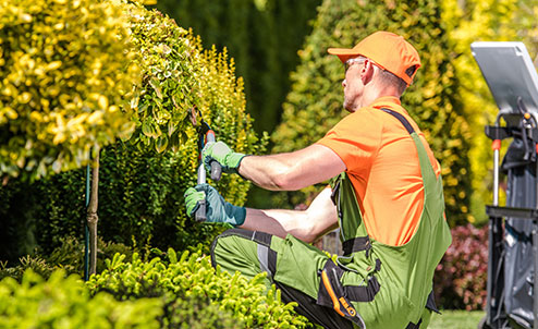 Benefits Of A Professional Landscaping Service & Why Every Business Needs One
